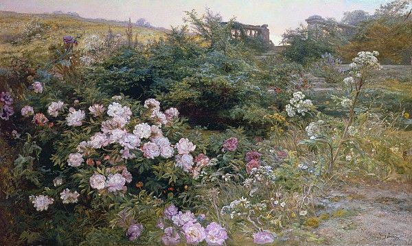 Henry Arthur Bonnefoy, in full blooms