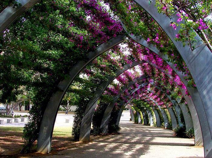 Brisbane, Australia   Landscape, Landscape design ...