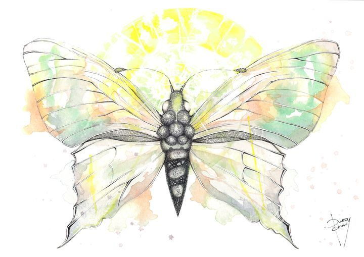 Peace - Fresc Emocio Art - Paintings & Prints Animals Birds & Fish Bugs… | ArtPal thumbnail
