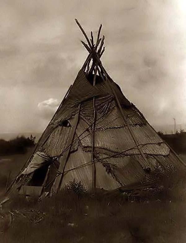 Here for your consideration is an old picture of a Tepee made of Grass. It was created in 1910 by Edward S. Curtis.    The Photograph shows a reed mat covered tepee in agrassy field in Washington state.    We have created this collection of illustrations primarily to serve as a valuable educational tool. Contact mailto:curator@ol....