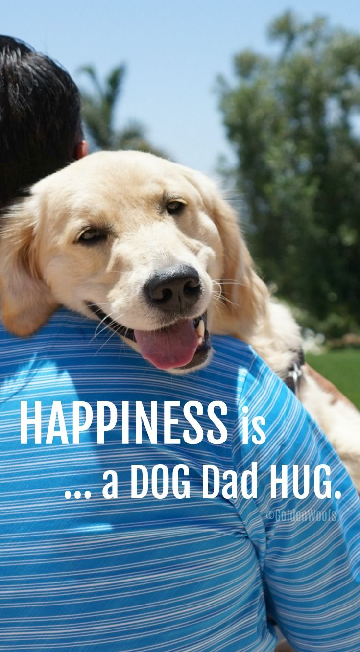 Happiness Is A Dog Dad Hug Golden Woofs Dog Dad Quotes Dog Dad Dogs Hugging