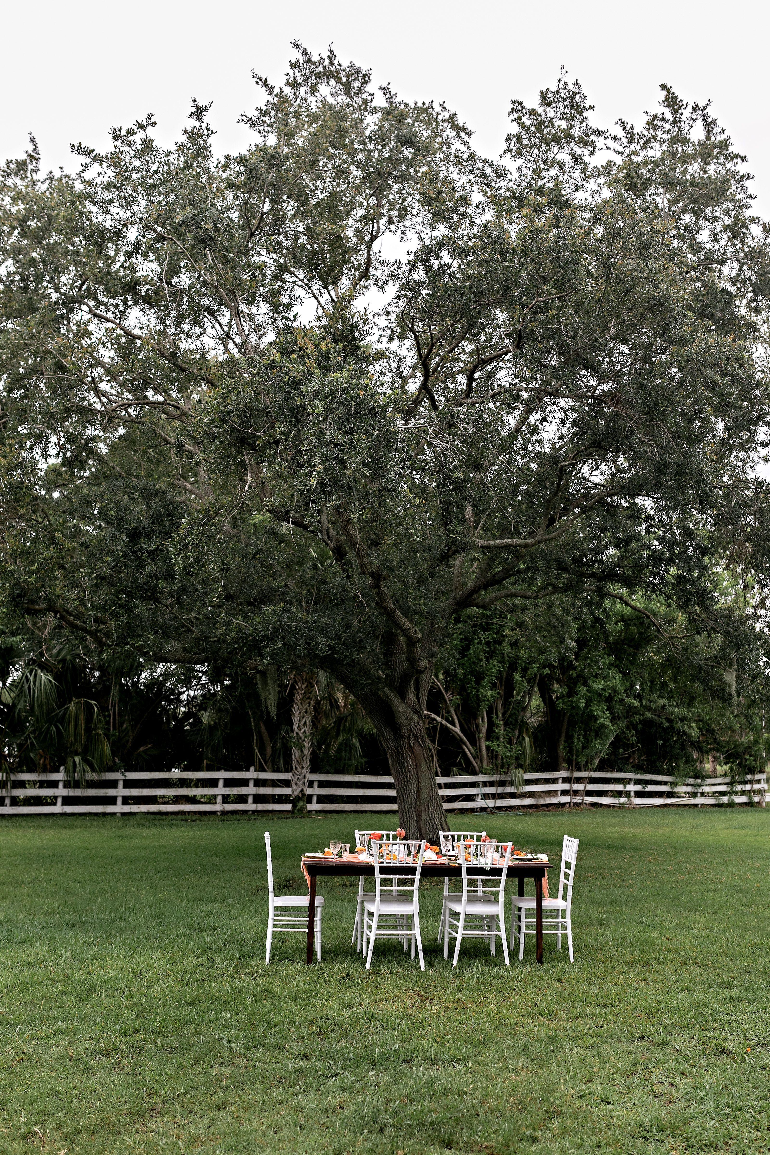 Old Florida Wedding At Twisted Oak Farm In Vero Beach Fl