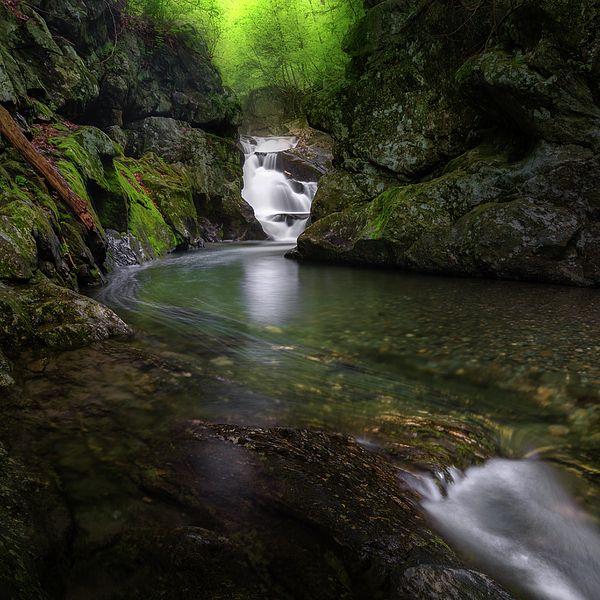 Seren Stream