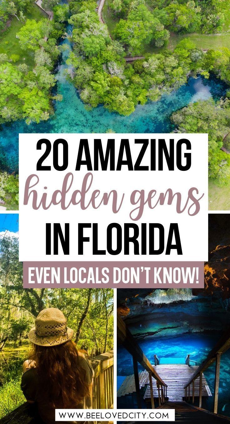 20 Most Beautiful Hidden Gems In Florida Beeloved City Florida Travel Destinations Florida Travel Guide Florida Travel