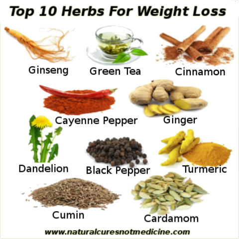 Top 10 natural herbs for weight loss