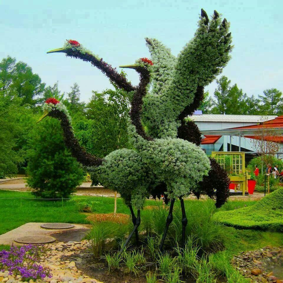 Me encanta este jardin.......