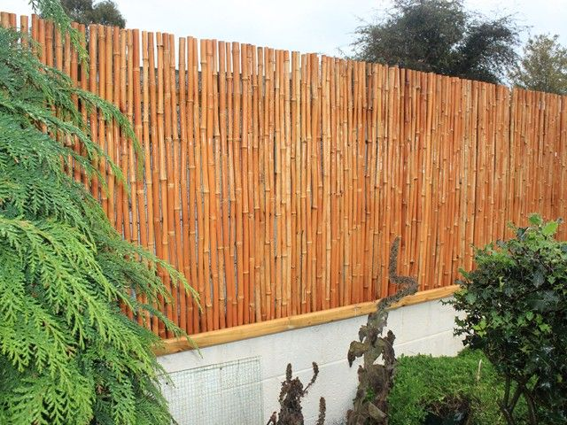 Bamboo wall screening decorating pinterest bamboo for Screening walls for gardens