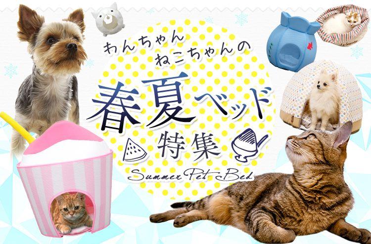 わんちゃん猫ちゃんの春夏ベッド特集 バナーデザイン バナー わんちゃん