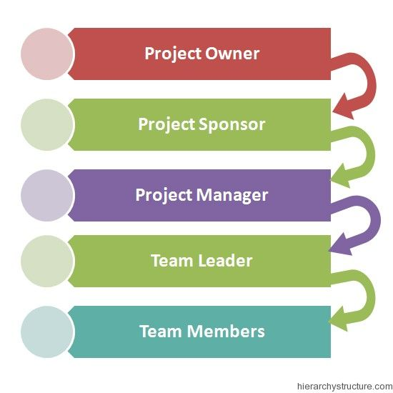 Project Management Hierarchy  Management Hierarchy