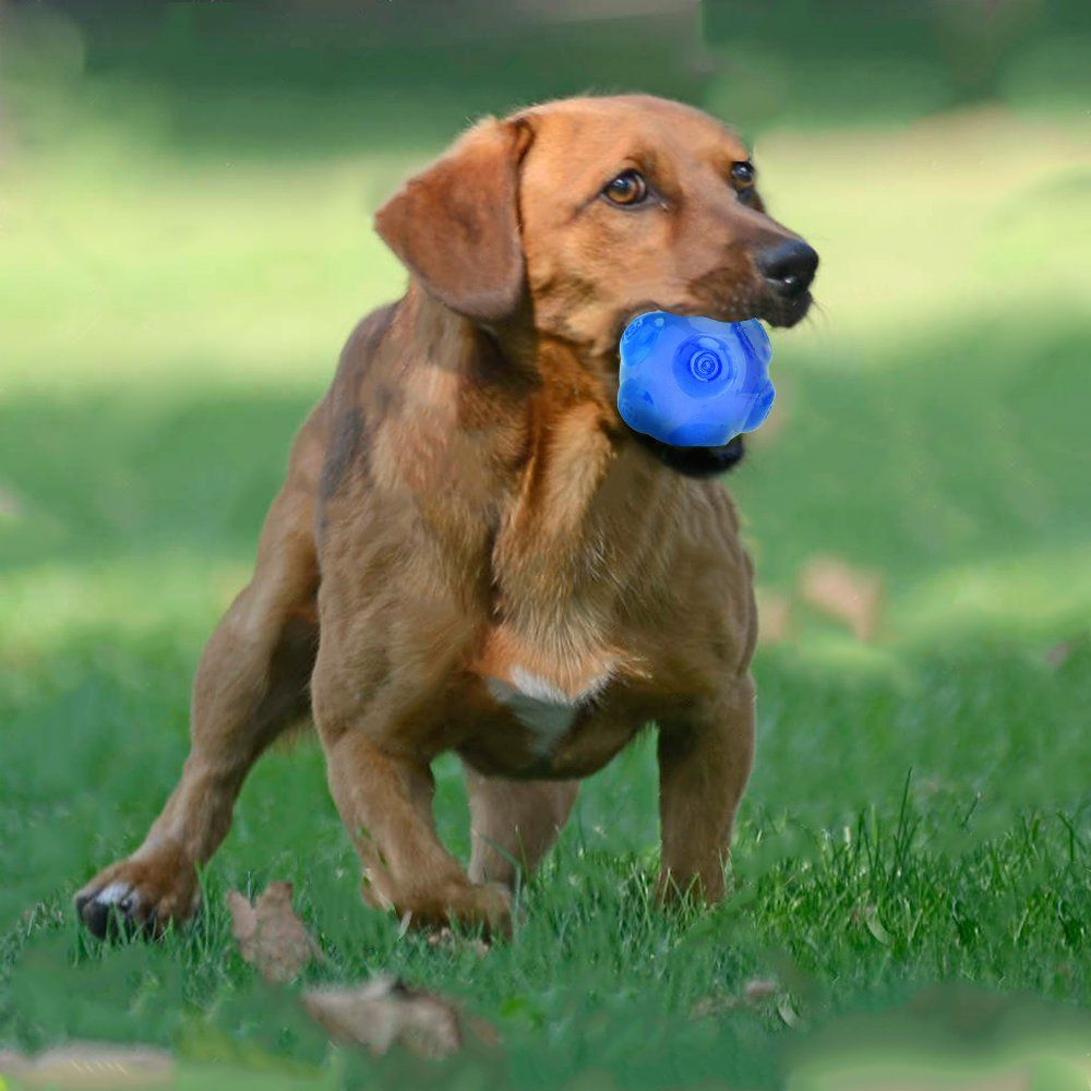 Squeaky Balls For Dogs Rubber Chew Toys For Medium And Large Dogs