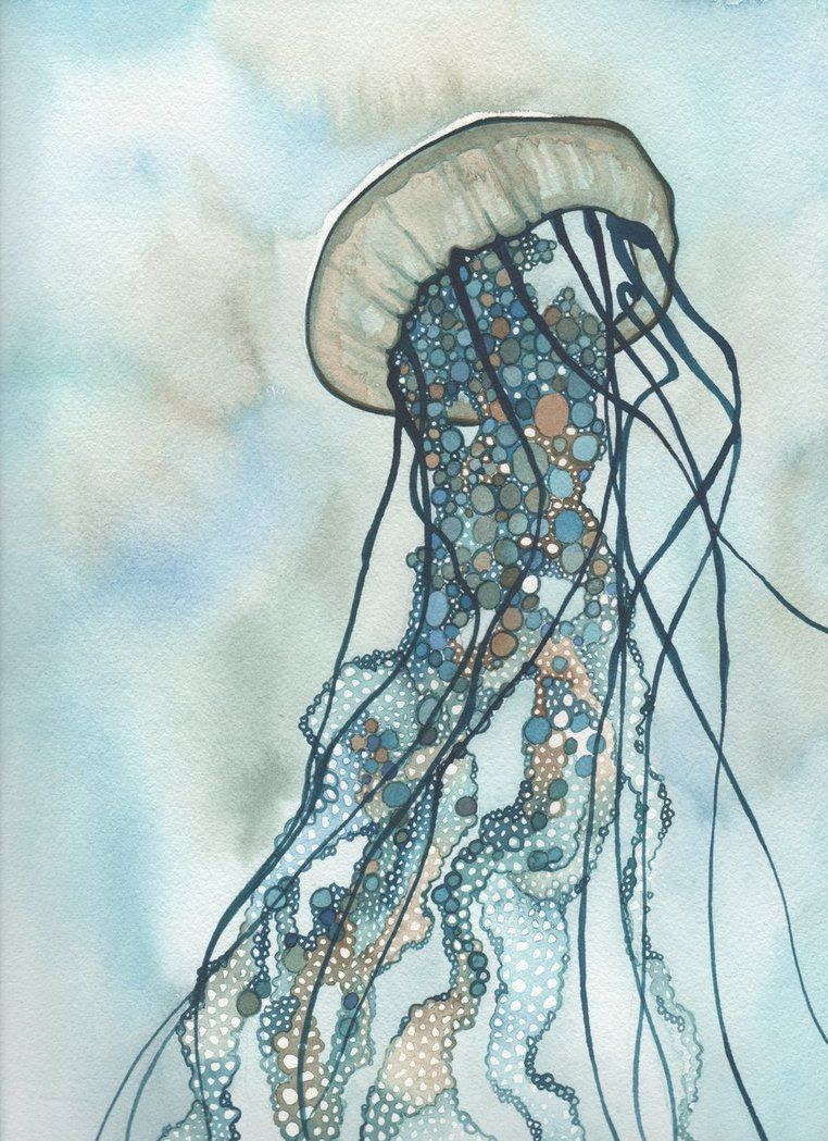 Jellyfish Tattoo Sketch Jellyfish Tattoo Sketch