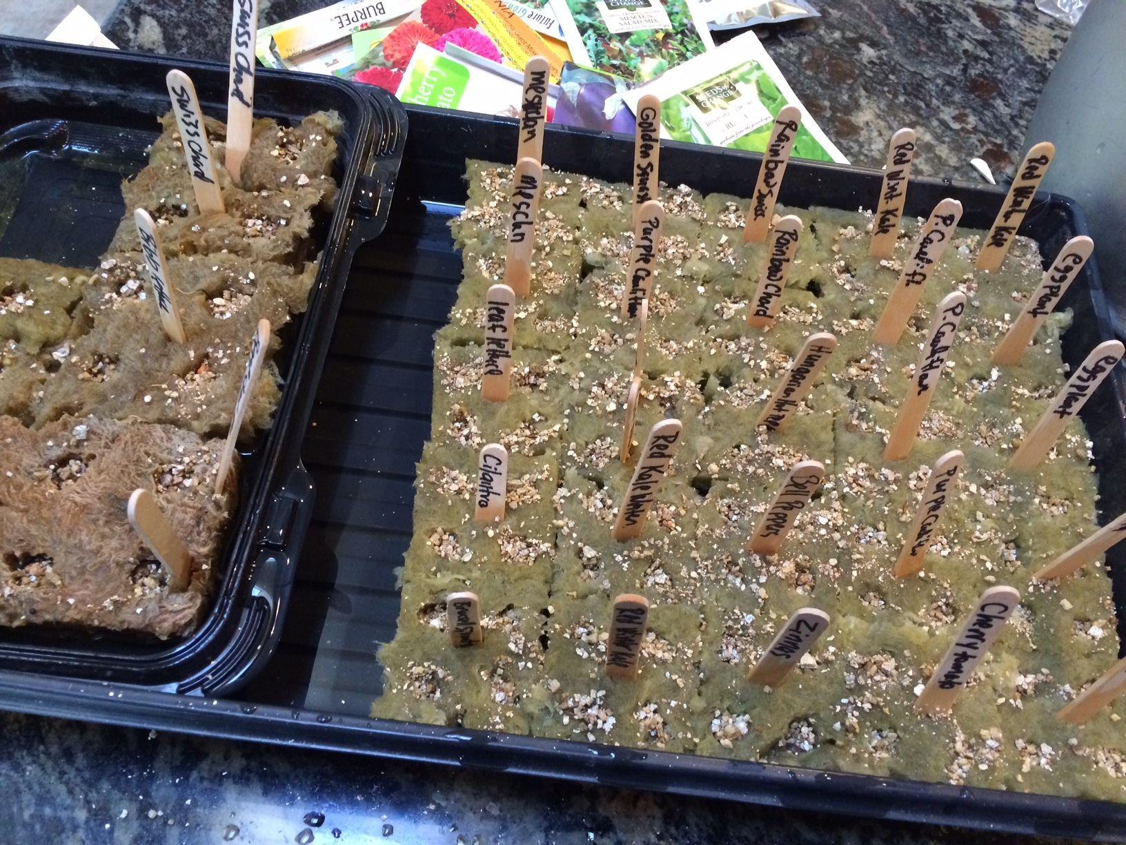 i just got some of my seedlings started for my tower gardens by