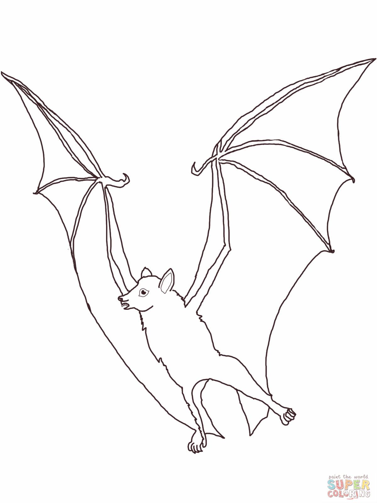 Fruit Bat coloring page | Fruit Bats | Pinterest | Bats