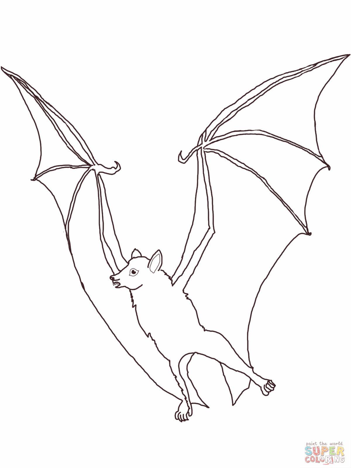 Fruit Bat Coloring Page Bat Coloring Pages Monster Coloring Pages Coloring Pages