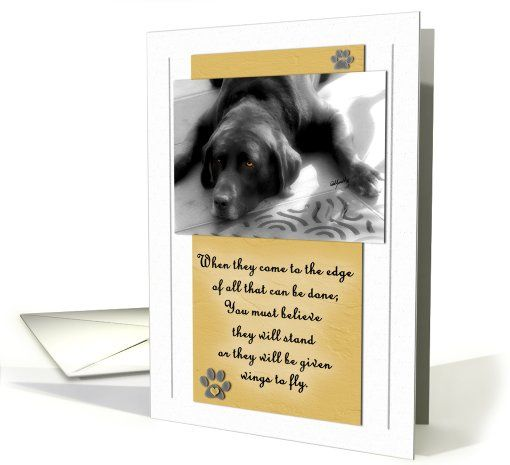 Pet sympathy loss of or terminally ill dog in yellow golds card dog card pet sympathy loss of dog or terminally ill dog greeting card by doreen erhardt m4hsunfo