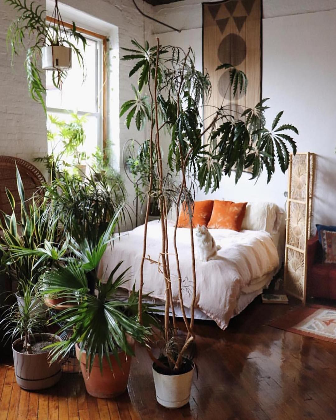 57 Bohemian Bedrooms That Ll Make You Want To Redecorate Asap Urban Outfitters Home Cozy House Bedroom Decor