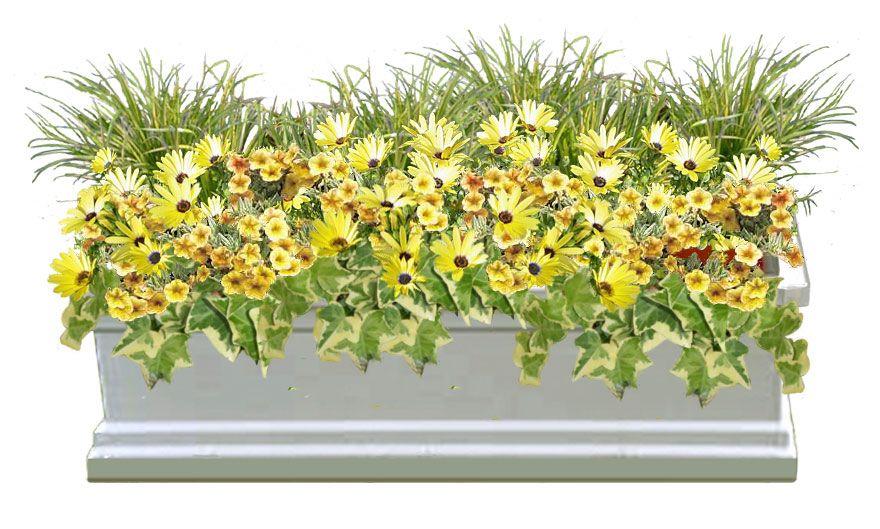 Flower box garden recipes by flower framers of cincinnati