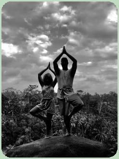 fun yoga inspiration in 2020  yoga poses for beginners