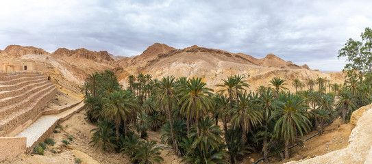 Beautiful green mountain oasis in Tunisia. Chebika oasis in Tozeur Governorate. Horizontal panoramic color photography. Aerial top view. – Buy this stock photo and explore similar images at Adobe Stock