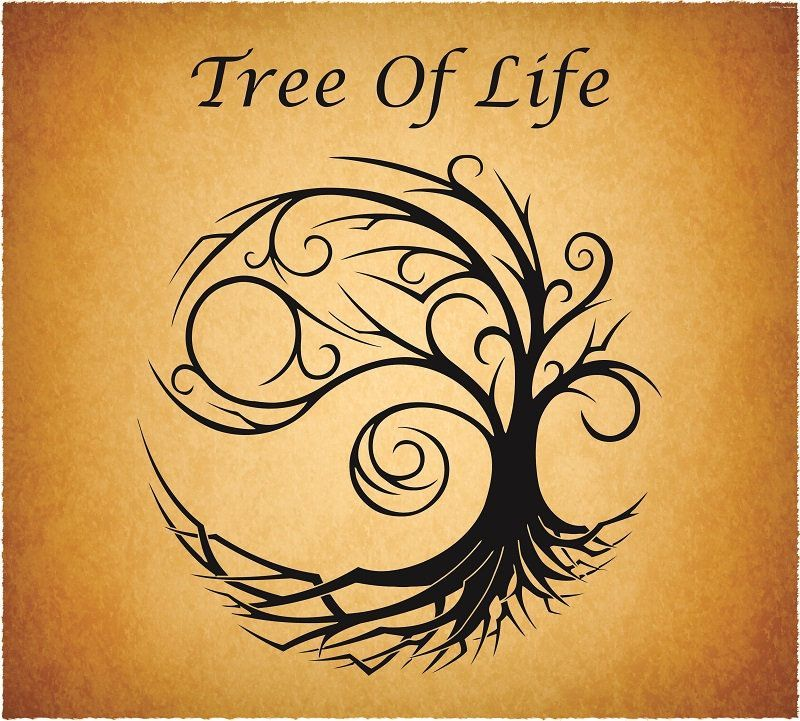 Tree of Life svg Love Tree Tree cut file Vector Tree Tree   Etsy