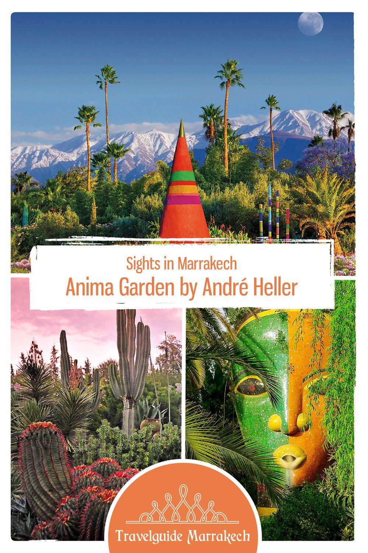 Anima Garden Marrakech Marrakech Most Beautiful Gardens Trip