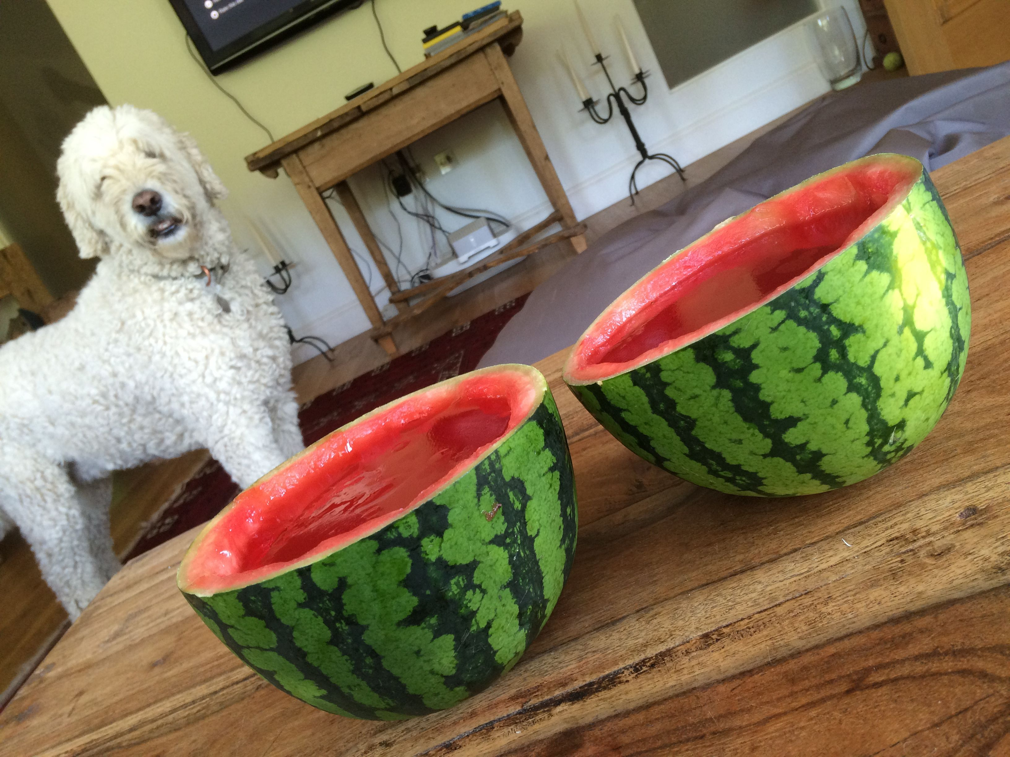 Watermelon Jelly. Scoop out the watermelon from its rine and freeze for a snack later then fill will red jelly for a fun party pudding.