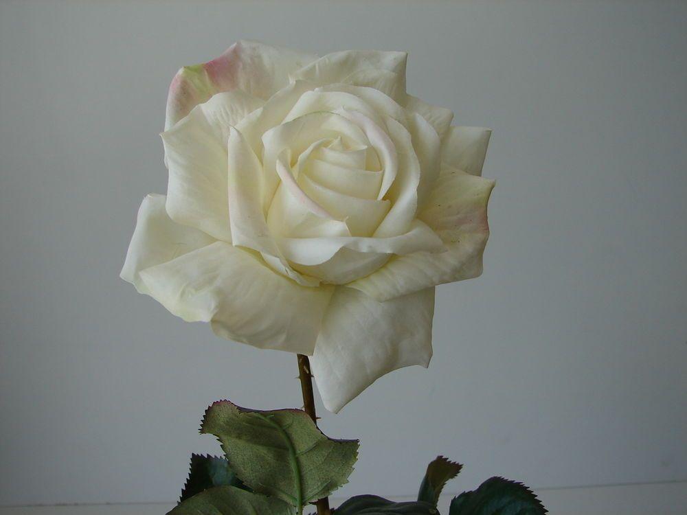 Kunstblumen weiße Rose langstielig 70 cm Rosen langer Stiel ...