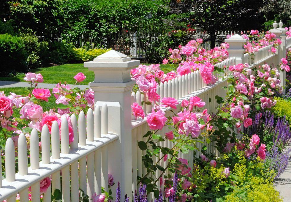 kleiner romantischer garten gestalten – bankroute, Gartenarbeit ideen