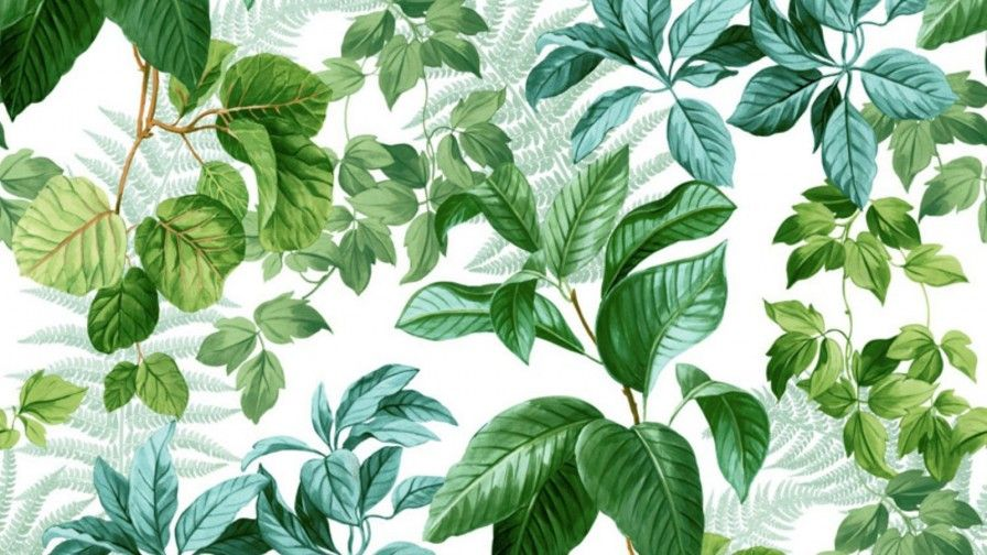 خلفيات ايفون جديدة Iphone Backgrounds 994 خلفيات ايفون Plant Leaves Iphone Background Iphone Wallpaper