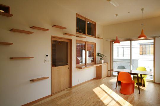 515c7de9097745ac61c31d072882e41c cat friendly house design house designs,Cat Friendly Home Design