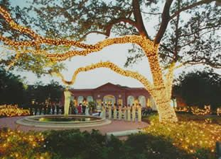 Wedding ceremony at the nola botanical garden wedding ideas new orleans botanical garden awesome wedding venue ideawe got married right here by the flute lady fountain junglespirit Choice Image