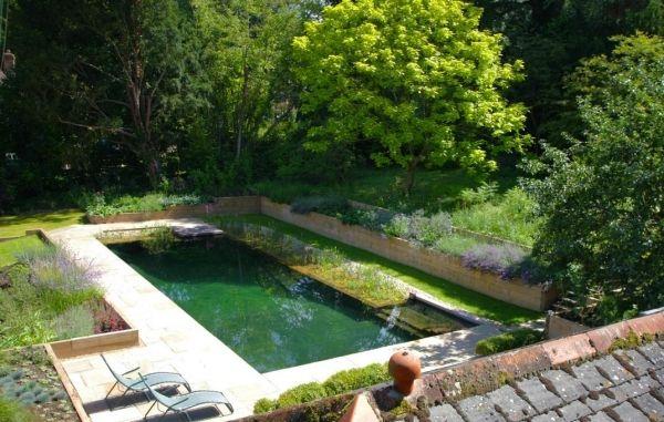 Pooldesign Der Selbstbau Vom Schwimmteich Mit Natürlichem