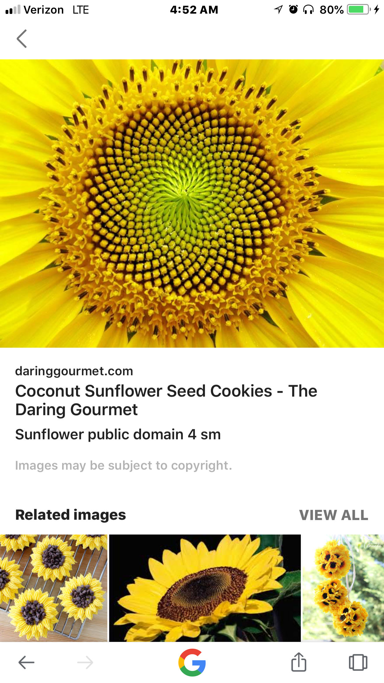Pin By Linda Bell Harrell On My Art Project Sunflower