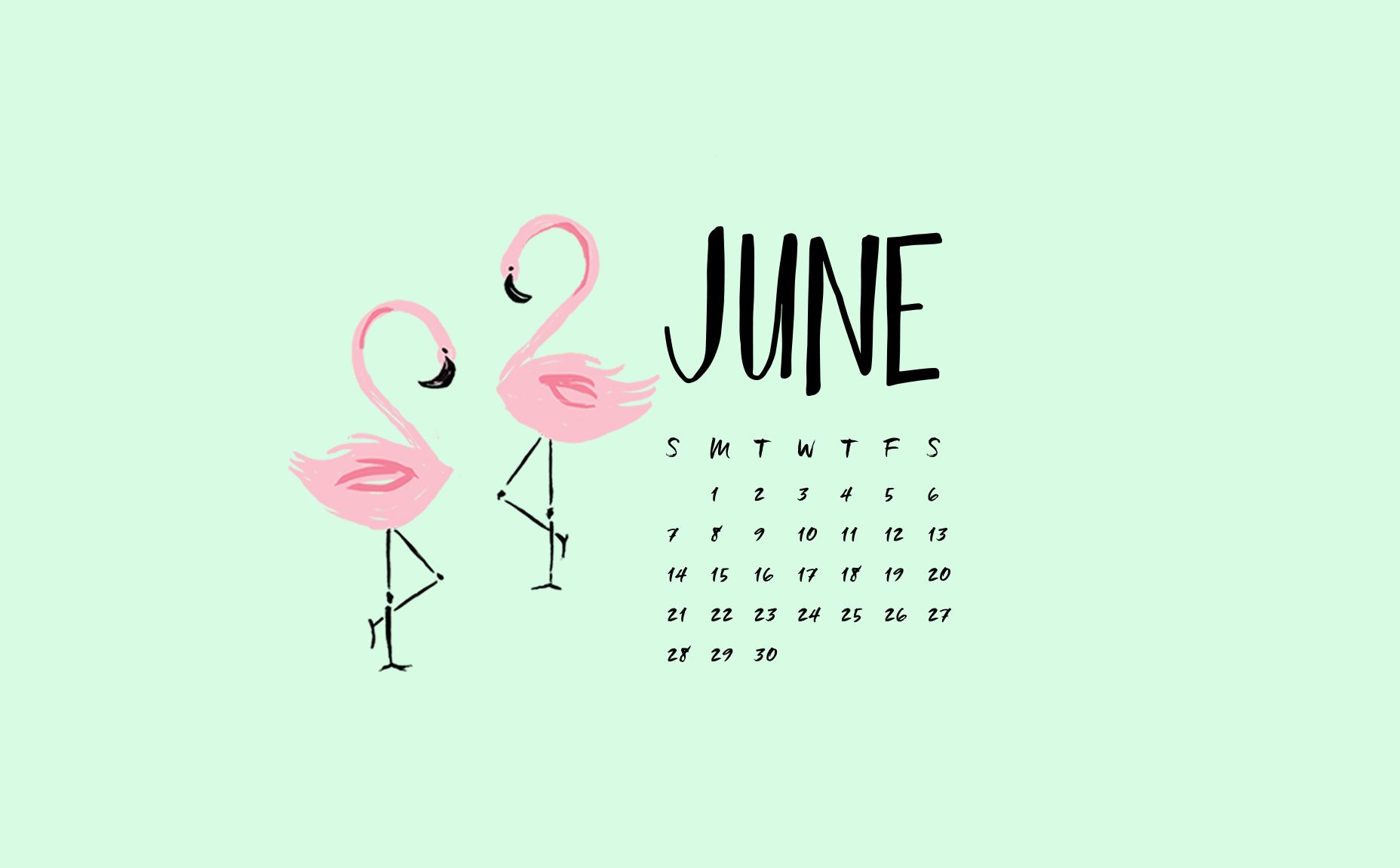june flamingo phone desktop wallpaper backgrounds by may designs download http