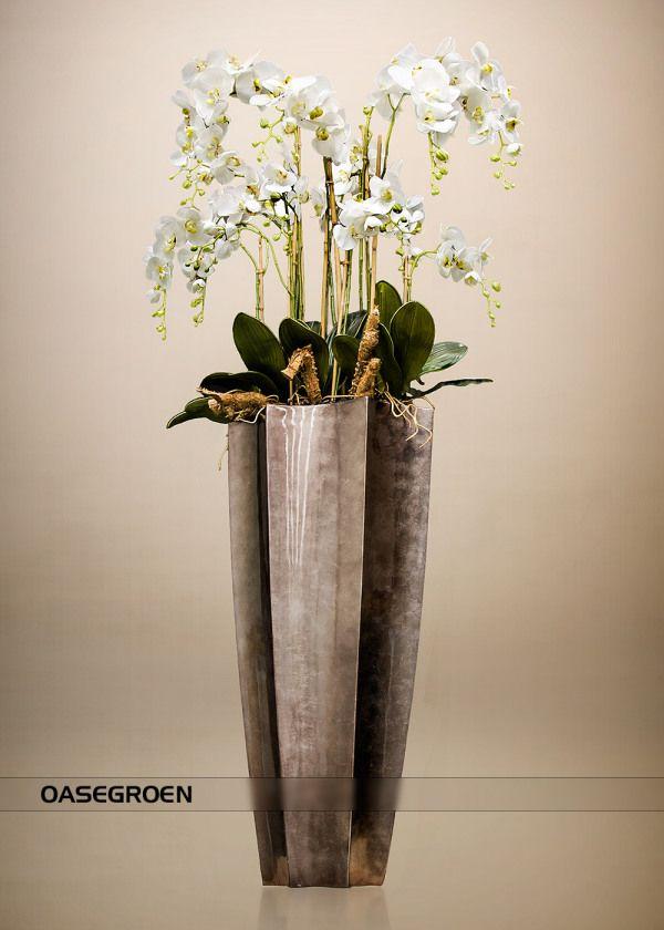 kunstorchideeën phalaenopsis #bodenvasedekorieren