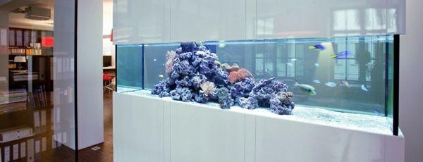 aquarium raumteiler modern gestaltet in weier farbe
