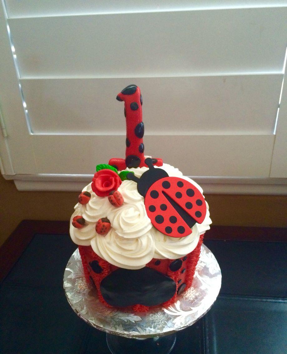 Strange Ladybug Themed Happy Birthday Smash Cake Ladybug 1St Birthdays Birthday Cards Printable Giouspongecafe Filternl