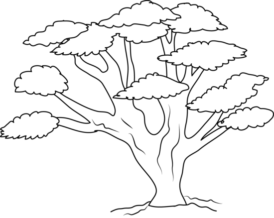 Oak Tree Coloring Page Free Clip Art Tree Coloring Page Tree Line Drawing Tree Outline