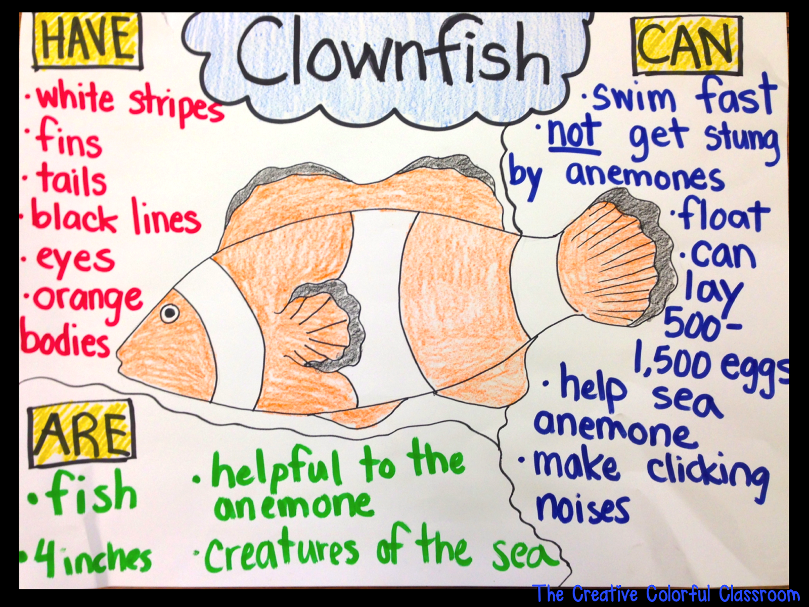 Informational Anchor Charts With Images