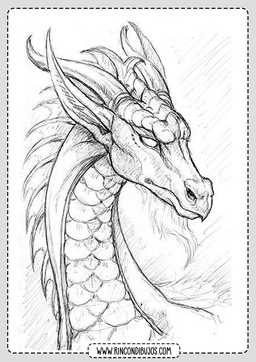 Cabeza De Dragon Para Colorear Rincon Dibujos Dibujar Arte Dibujos Dibujo De Dragon