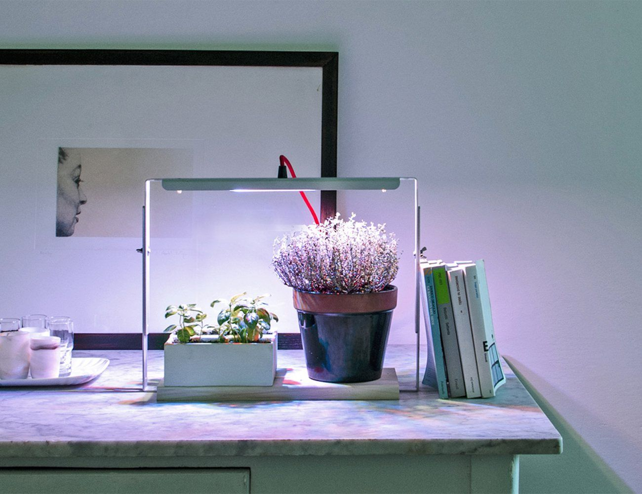 This lamp covers the entire life cycle of your indoor greenery. One look at the elegant Bulbo Indoor #Plant #Lamp will tell you this isn't something ordinary.