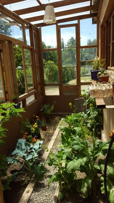 Invernadero de ventanas demolici n greenhouse made old - Invernadero para casa ...