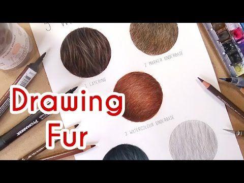 5 Methods To Draw Realistic Fur Coloured Pencil Drawing Tutorial E Colored Pencil Drawing Tutorial Colored Pencil Drawing Techniques Pencil Drawing Tutorials