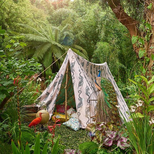 Setting up camp for clarke_clarke_interiors new