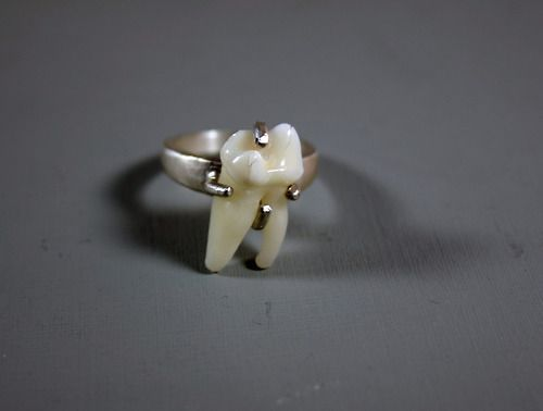 Human Tooth Engagement Ring