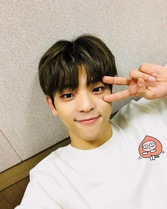 "WOOJIN - STRAY KIDS on Instagram: ""- 잘들 지내고 있어요?? 저희는 열심히 연습중이에요ㅎㅎ Are you all doing well?? We are practicing hardㅎㅎ —"