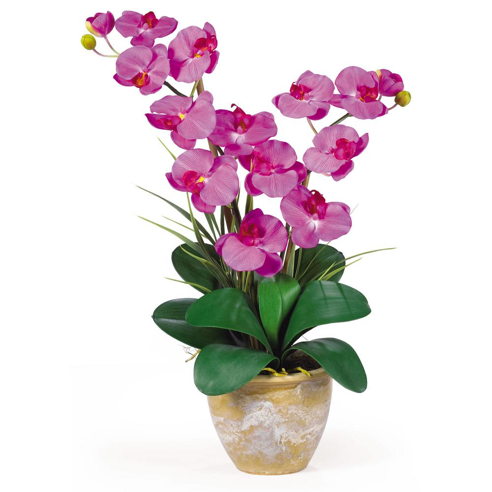 Nearly Natural 25 In Double Phalaenopsis Silk Orchid Flower Arrangement In Orchid 1026 Or The Home Depot Orchid Flower Arrangements Silk Orchids Phalaenopsis Orchid