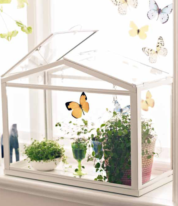 create adorable scene mini socker greenhouse serre lot ikea vindruva peut tre utilis comme une. Black Bedroom Furniture Sets. Home Design Ideas