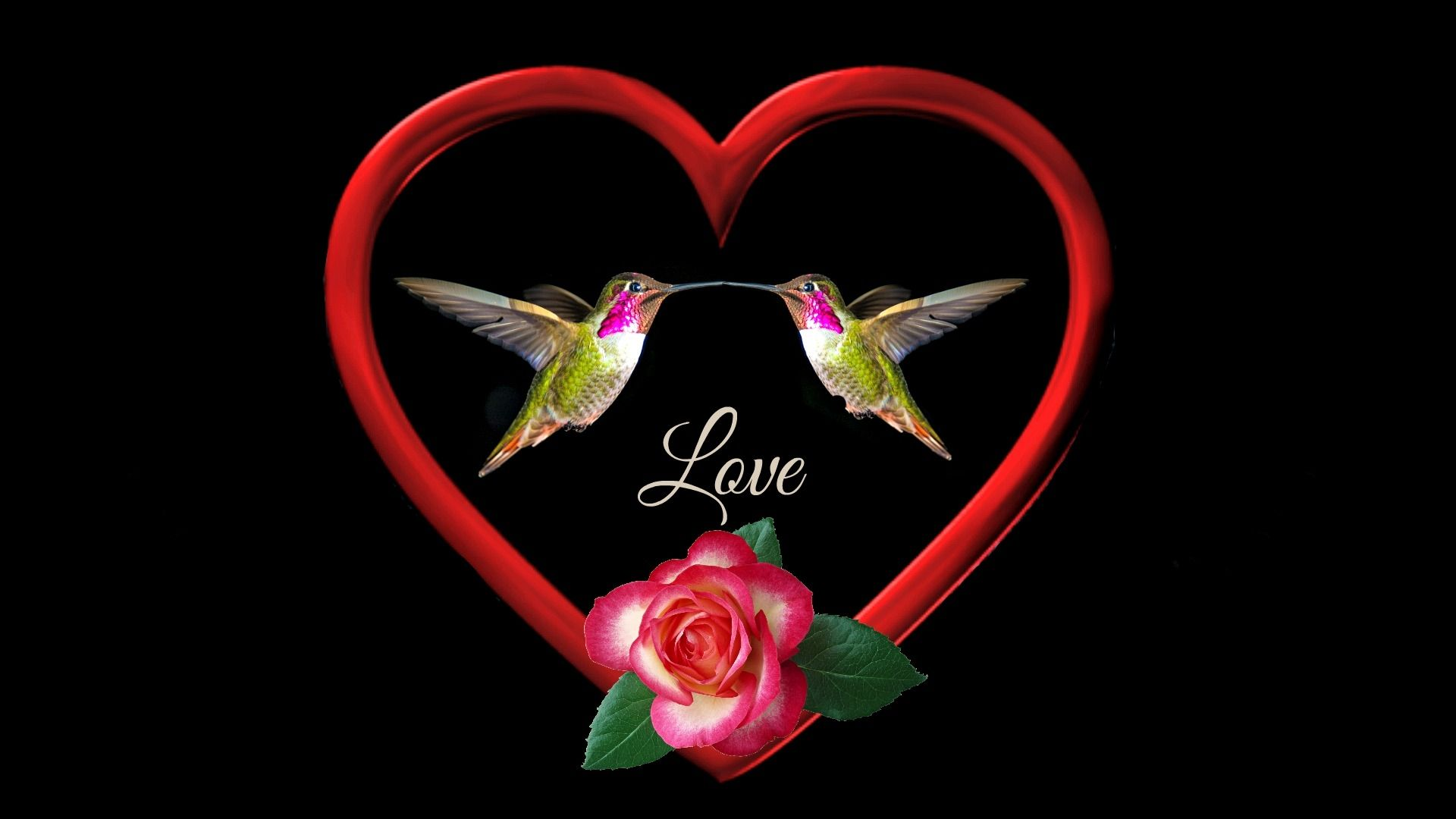 wallpapers designs: romantic cute love images 800×600 new love