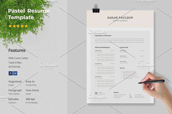 Pastel Resume Template by Papernoon on @creativemarket Beautiful - free resume design templates